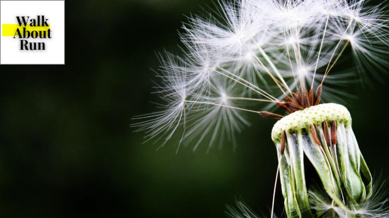 Alergia i sport. Reakcje alergiczne przy wysiłku fizycznym.